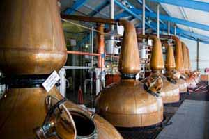 Whiskey distillery - copper vats - Keit IRmadillo 2